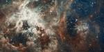 Tarantula Nebula, photo by NASA, via WikiMedia.