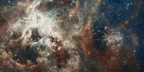 Tarantula Nebula, photo by NASA, via WikiMedia.